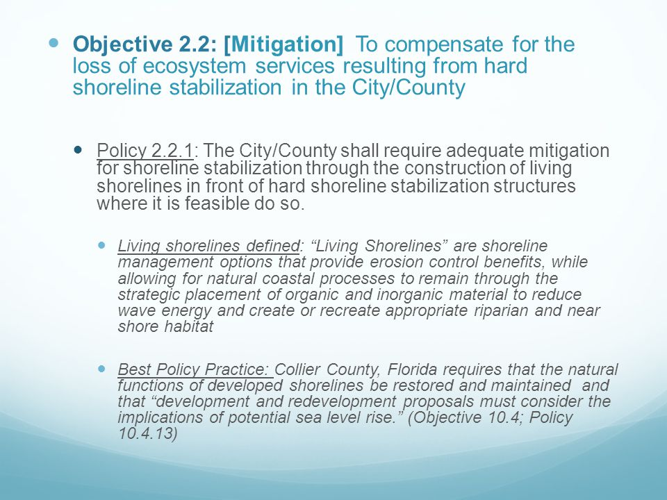 Objective 2.2: [Mitigation] To compensate for the loss of ecosystem services resulting from hard shoreline stabilization in the City/County